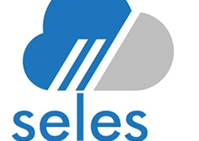 Seles Software – Shipping Middleware